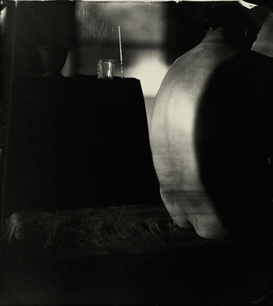sally_mann_proud_flesh_04