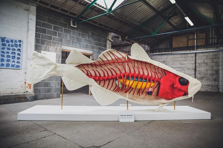 PAPER CITY LAZERIAN LOCAL FISH